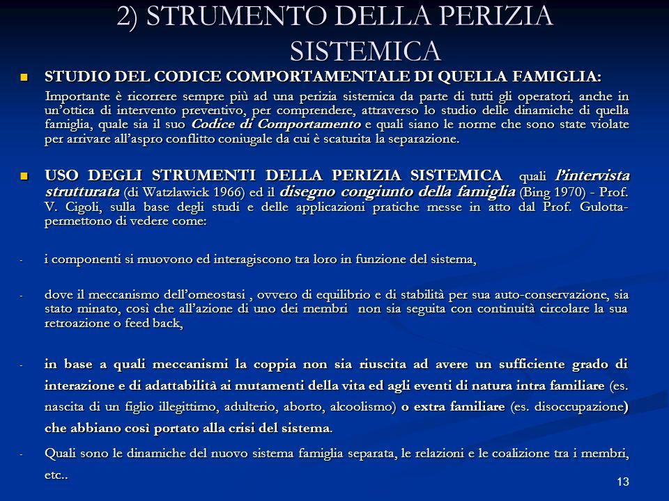 2) STRUMENTO DELLA PERIZIA SISTEMICA