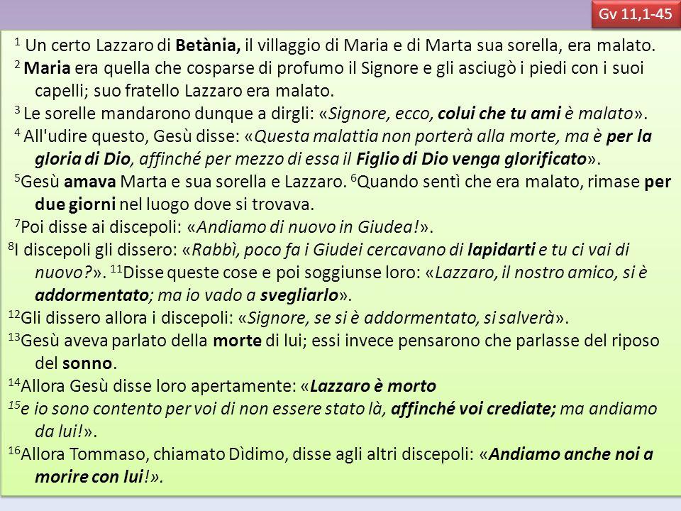 7Poi disse ai discepoli: «Andiamo di nuovo in Giudea!».