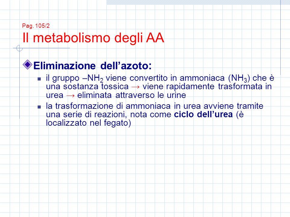 Eliminazione dell'azoto: