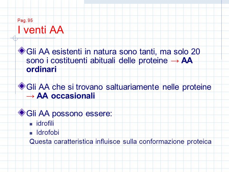Gli AA che si trovano saltuariamente nelle proteine → AA occasionali