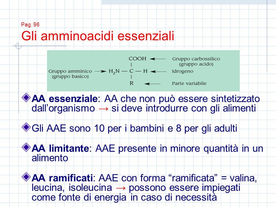 Pag. 96 Gli amminoacidi essenziali