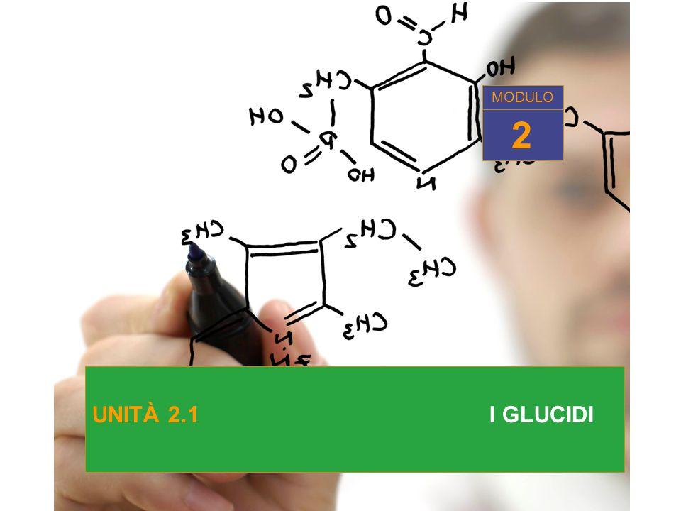MODULO 2 UNITÀ 2.1 I GLUCIDI
