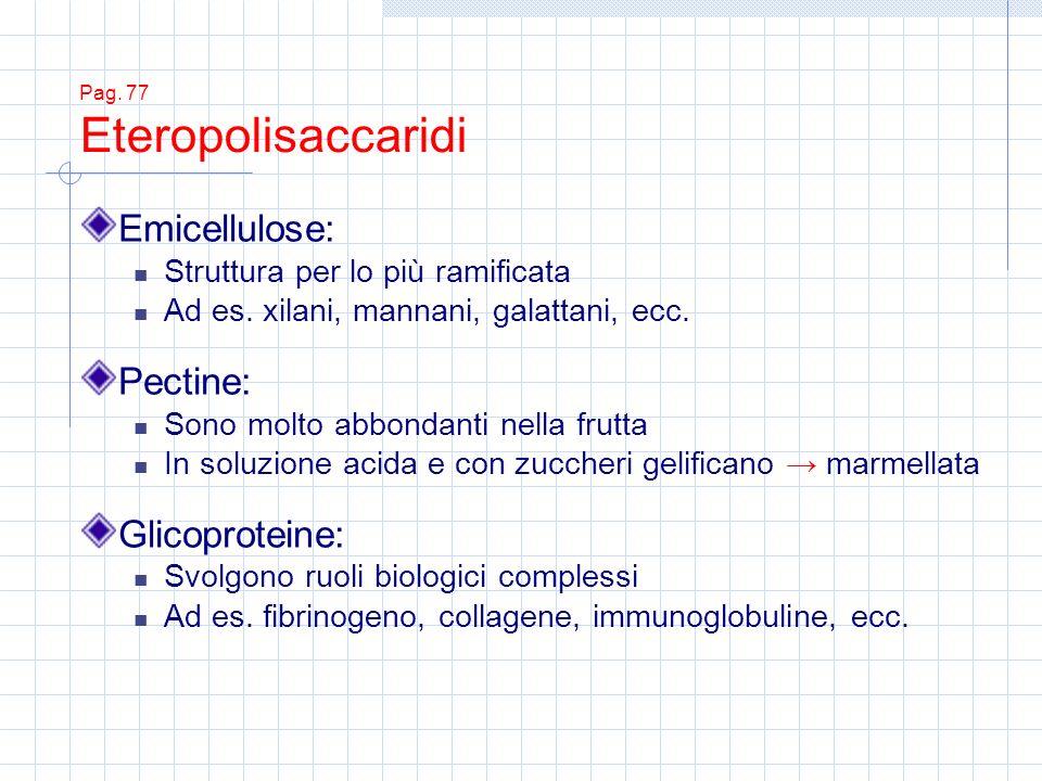 Pag. 77 Eteropolisaccaridi