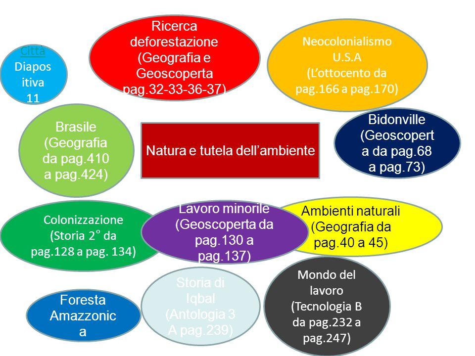 Ricerca deforestazione (Geografia e Geoscoperta pag.32-33-36-37)