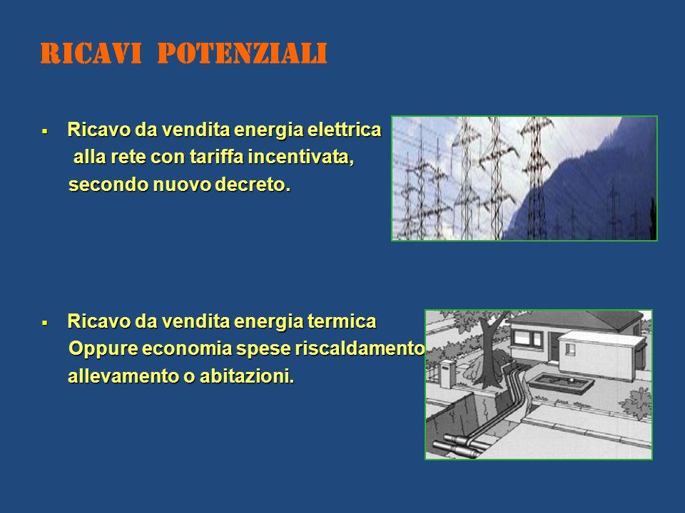 Ricavi Potenziali Ricavo da vendita energia elettrica