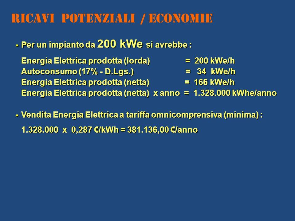Ricavi Potenziali / Economie