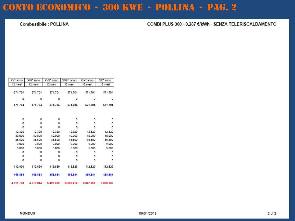 CONTO ECONOMICO - 300 kWe - POLLINA - Pag. 2
