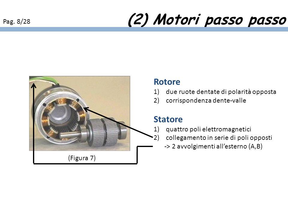 (2) Motori passo passo Rotore Statore Pag. 8/28