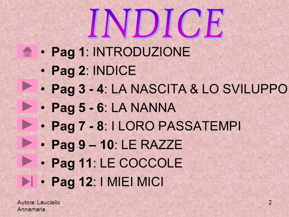 INDICE Pag 1: INTRODUZIONE Pag 2: INDICE