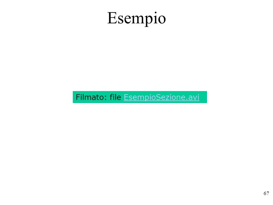 Esempio Filmato: file EsempioSezione.avi