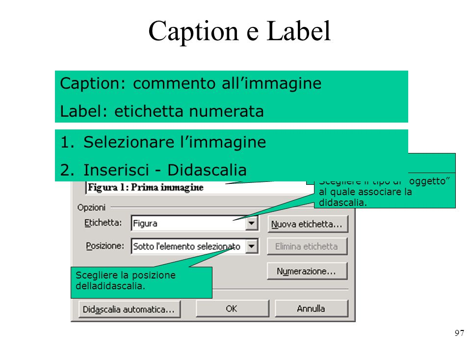 Caption e Label Caption: commento all'immagine