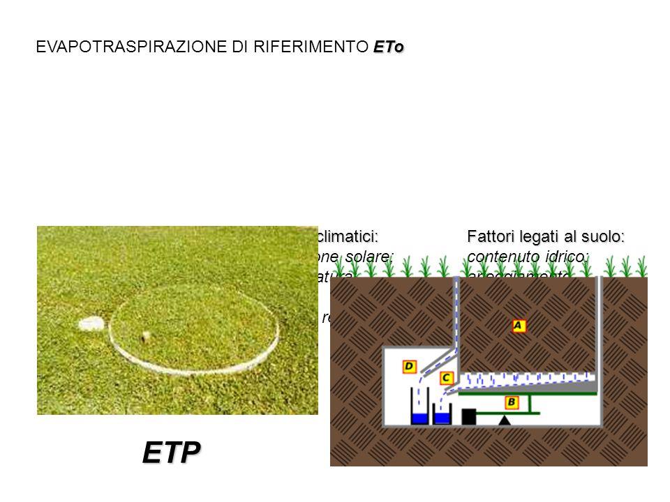 ETP EVAPOTRASPIRAZIONE DI RIFERIMENTO ETo Fattori legati alla coltura: