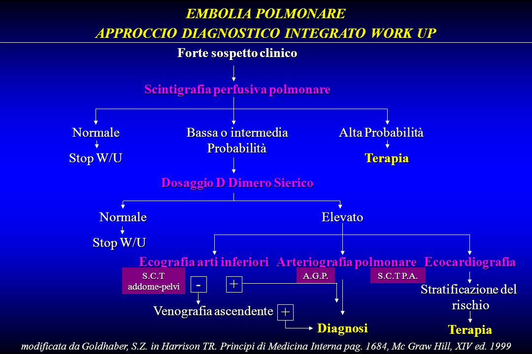 - + + EMBOLIA POLMONARE APPROCCIO DIAGNOSTICO INTEGRATO WORK UP