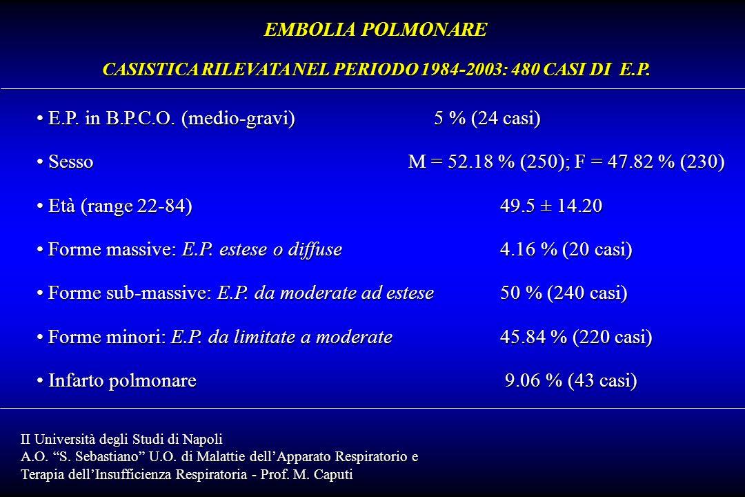 CASISTICA RILEVATA NEL PERIODO 1984-2003: 480 CASI DI E.P.
