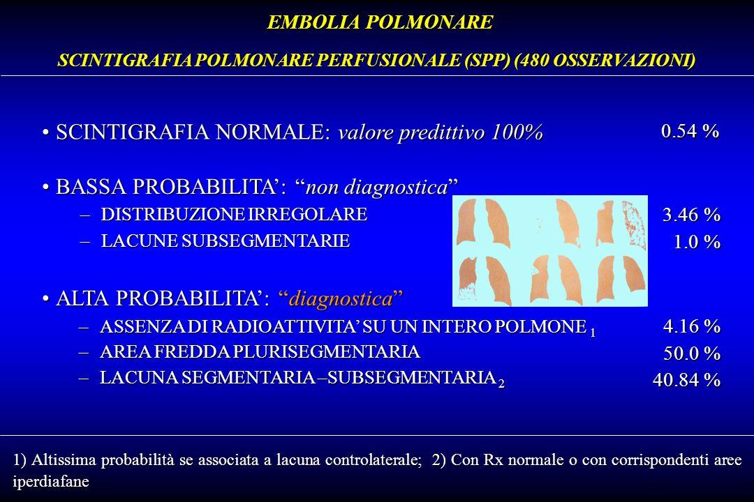 SCINTIGRAFIA POLMONARE PERFUSIONALE (SPP) (480 OSSERVAZIONI)