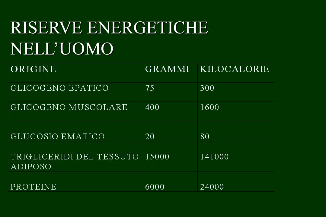 RISERVE ENERGETICHE NELL'UOMO