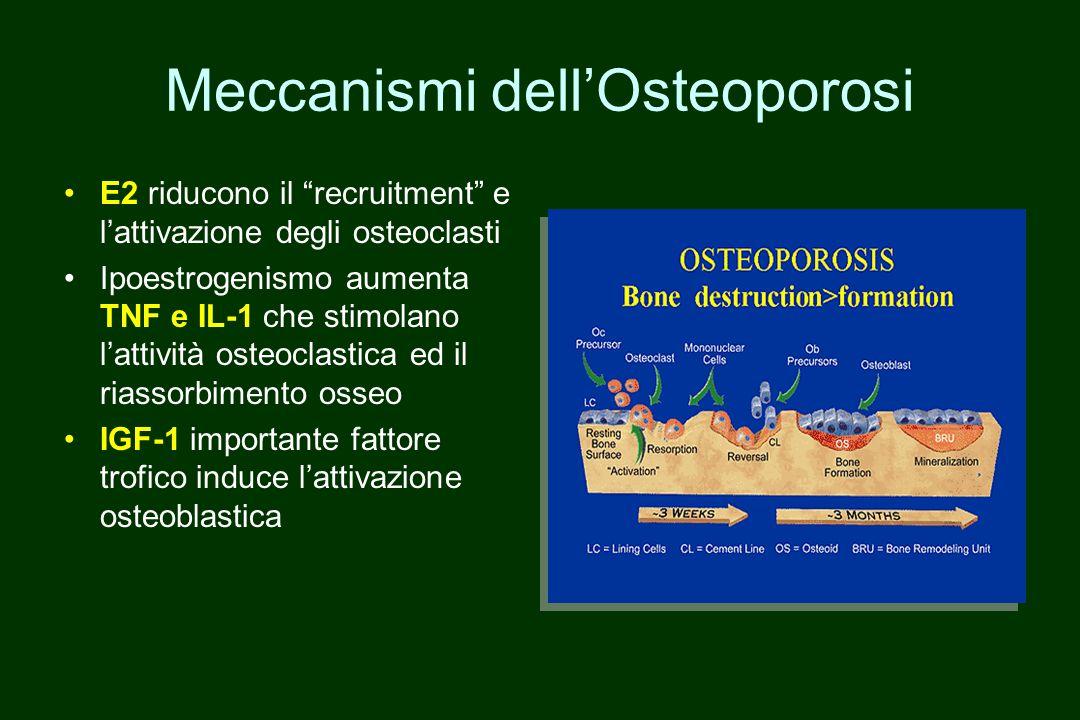 Meccanismi dell'Osteoporosi