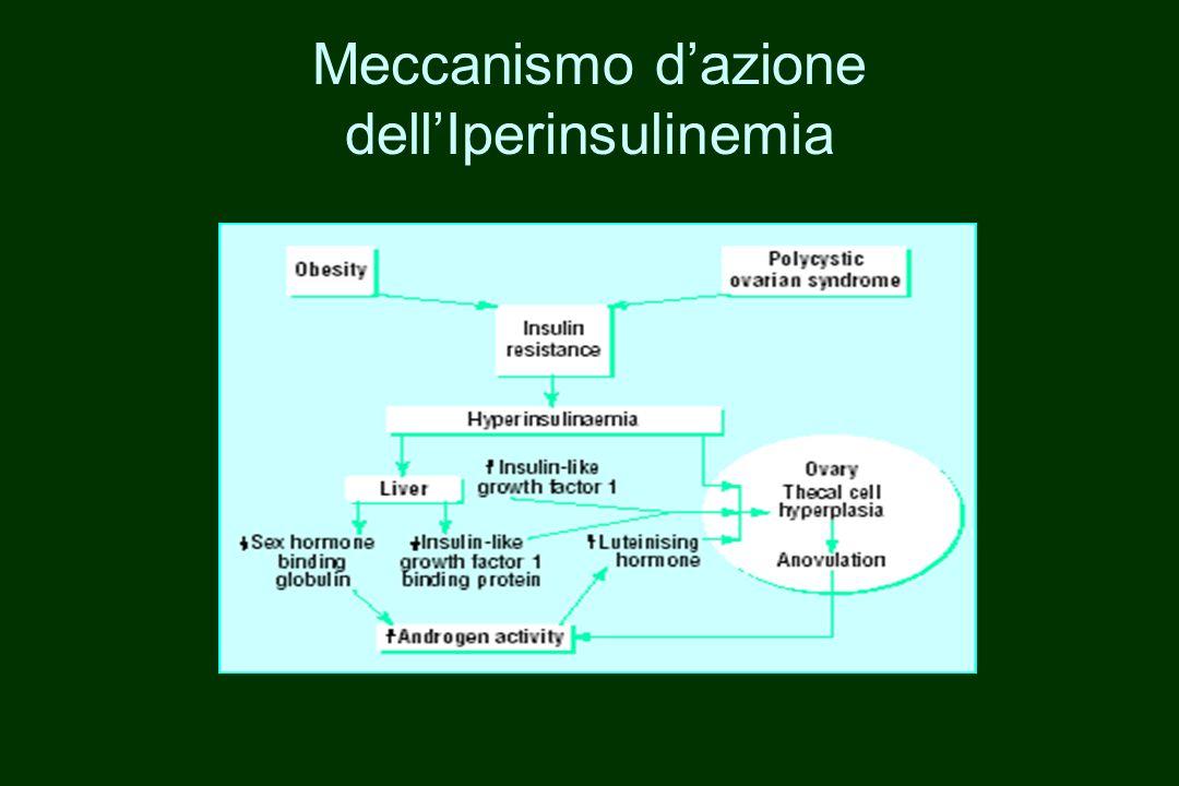 Meccanismo d'azione dell'Iperinsulinemia