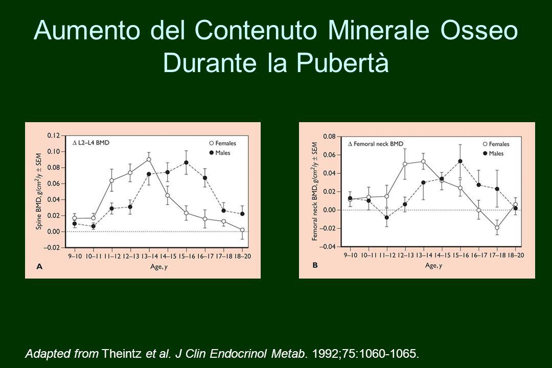 Aumento del Contenuto Minerale Osseo Durante la Pubertà