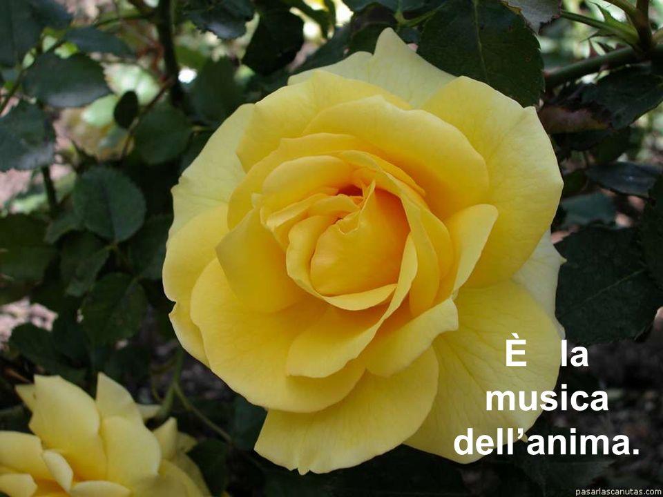 È la musica dell'anima.