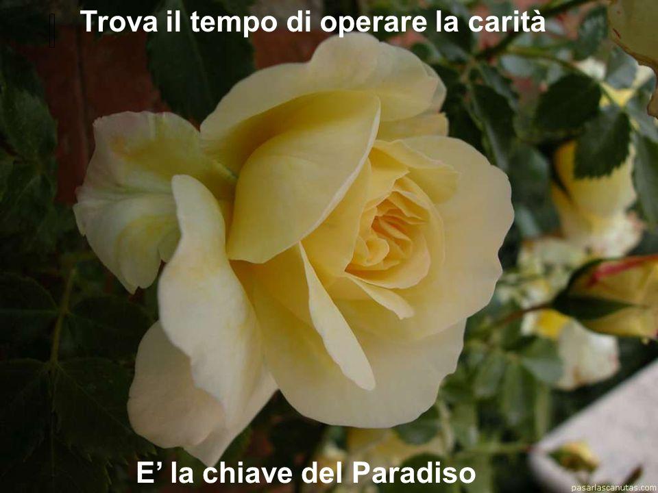 Trova il tempo di operare la carità E' la chiave del Paradiso