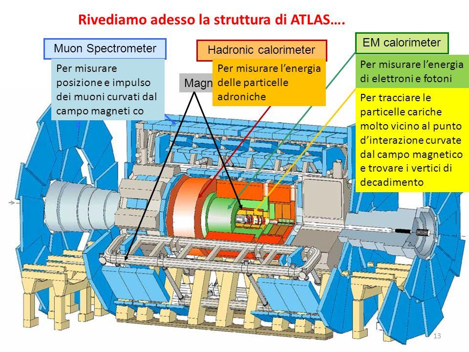 Rivediamo adesso la struttura di ATLAS….