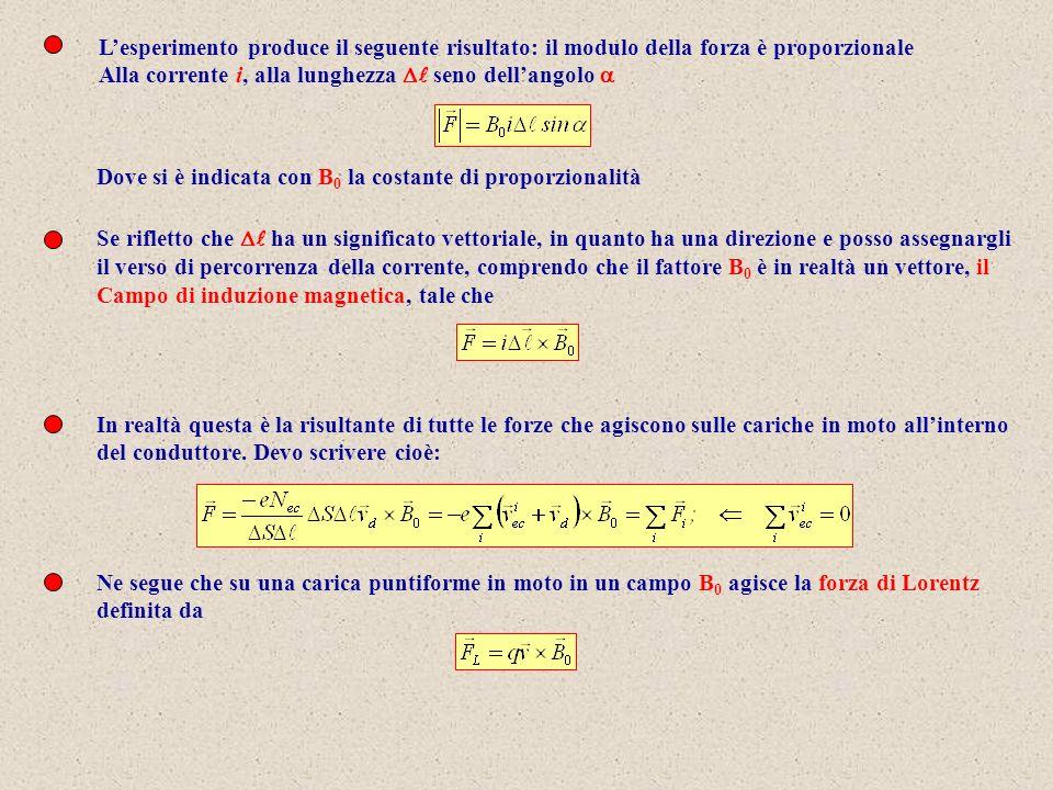 L'esperimento produce il seguente risultato: il modulo della forza è proporzionale