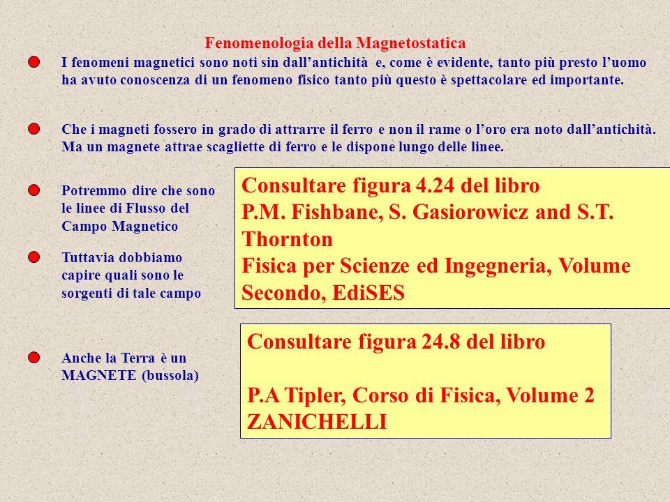 Fenomenologia della Magnetostatica