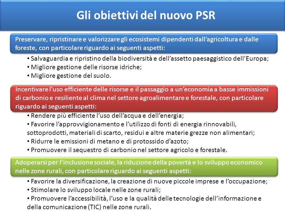 Gli obiettivi del nuovo PSR