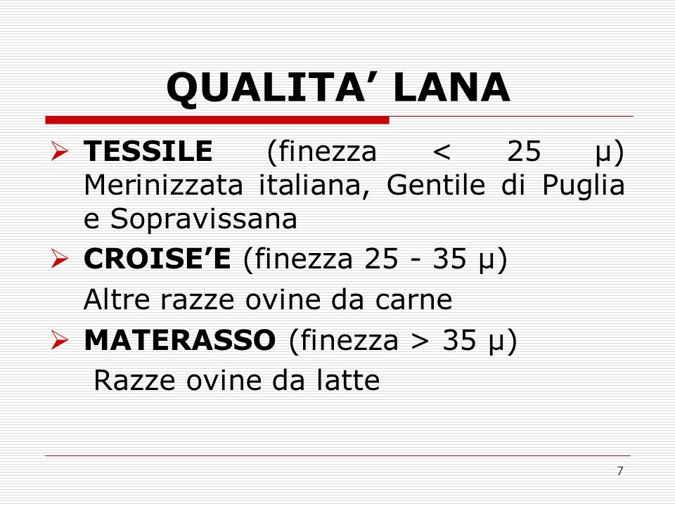 QUALITA' LANA TESSILE (finezza < 25 µ) Merinizzata italiana, Gentile di Puglia e Sopravissana. CROISE'E (finezza 25 - 35 µ)