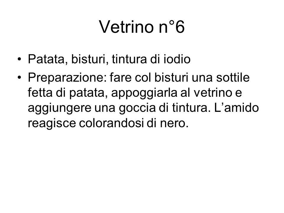 Vetrino n°6 Patata, bisturi, tintura di iodio