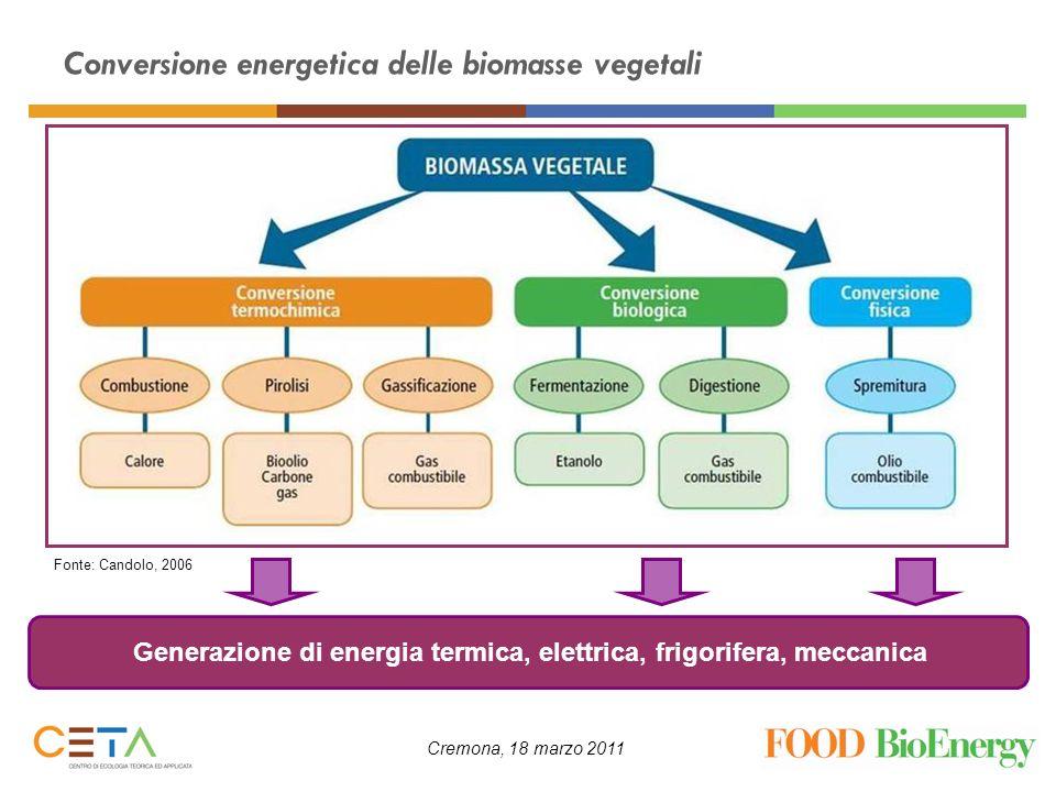 Conversione energetica delle biomasse vegetali