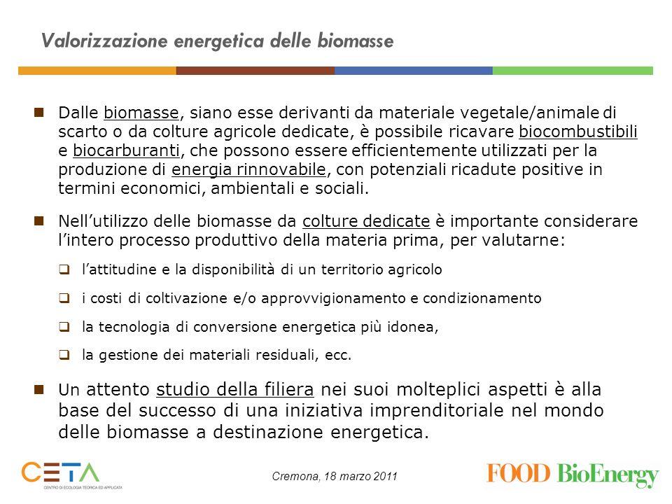 Valorizzazione energetica delle biomasse