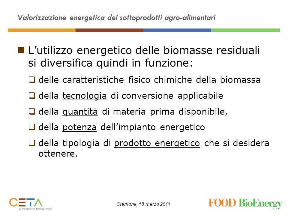 Valorizzazione energetica dei sottoprodotti agro-alimentari