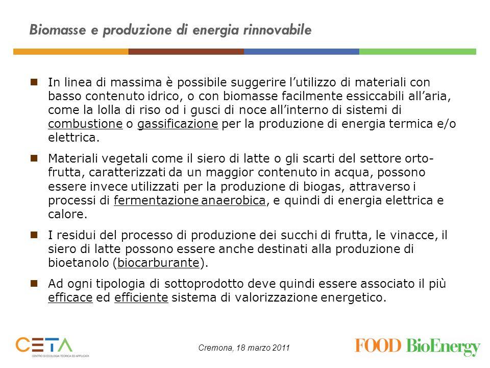 Biomasse e produzione di energia rinnovabile