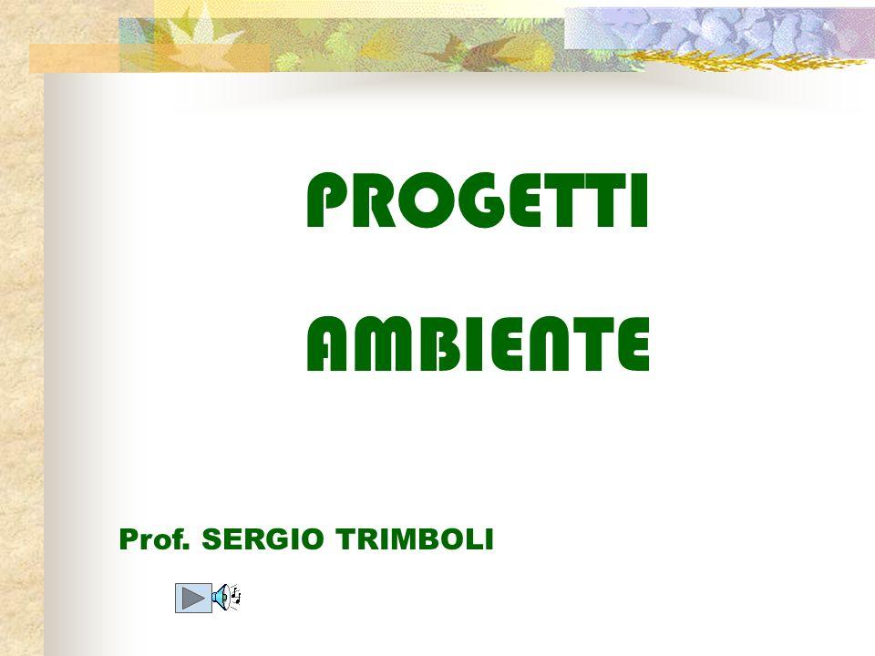 PROGETTI AMBIENTE Prof. SERGIO TRIMBOLI