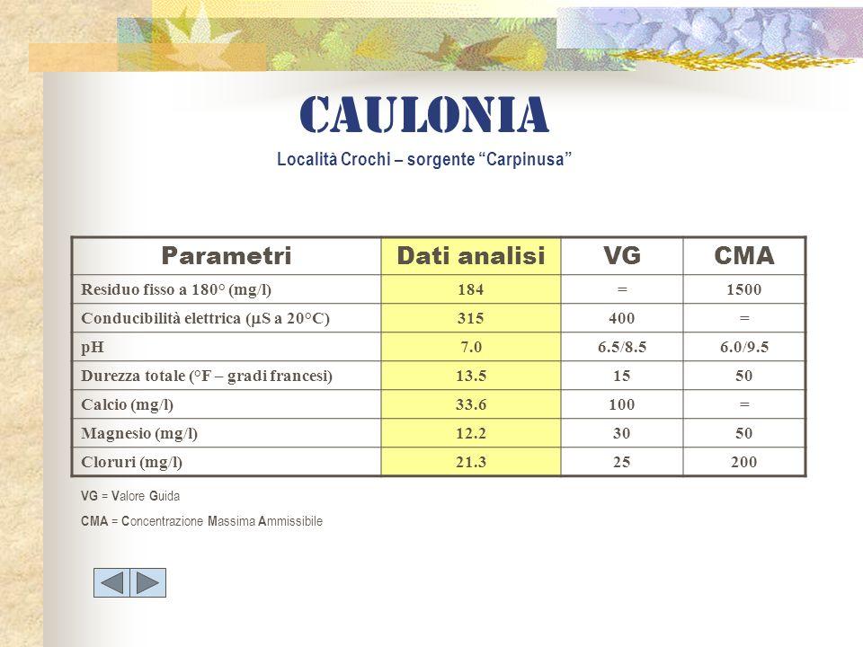Caulonia Località Crochi – sorgente Carpinusa
