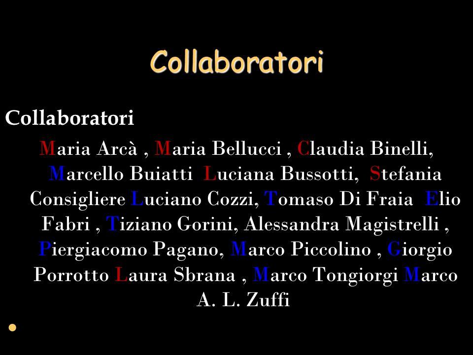 Collaboratori Collaboratori
