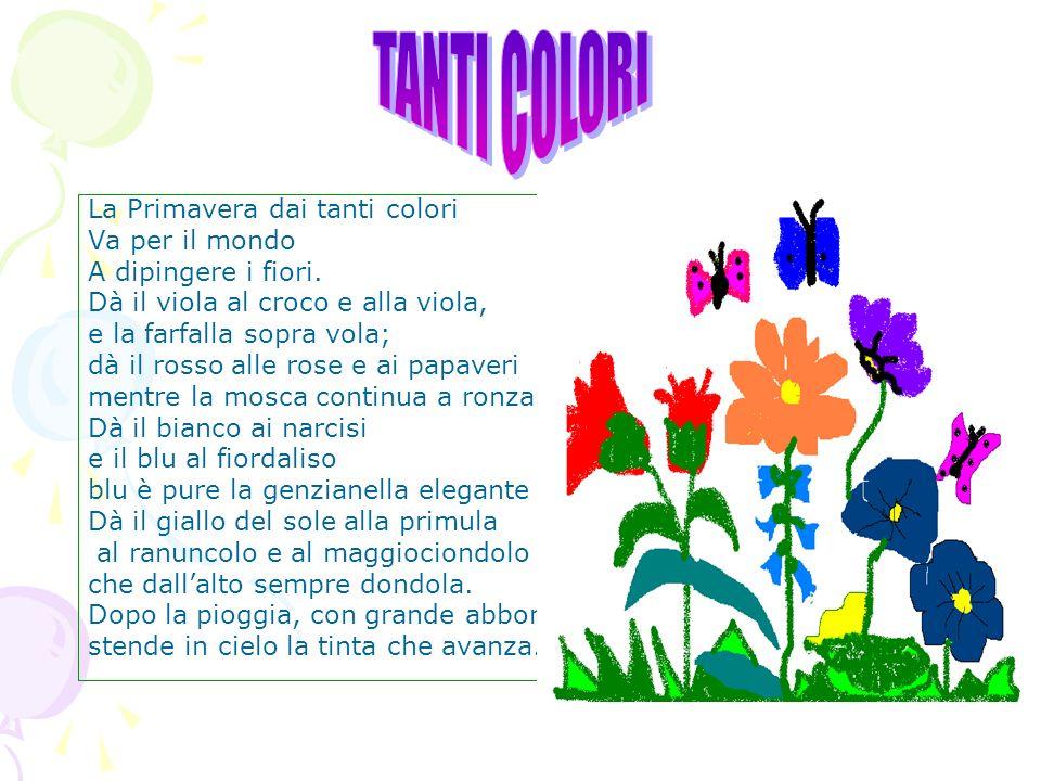 TANTI COLORI La Primavera dai tanti colori Va per il mondo