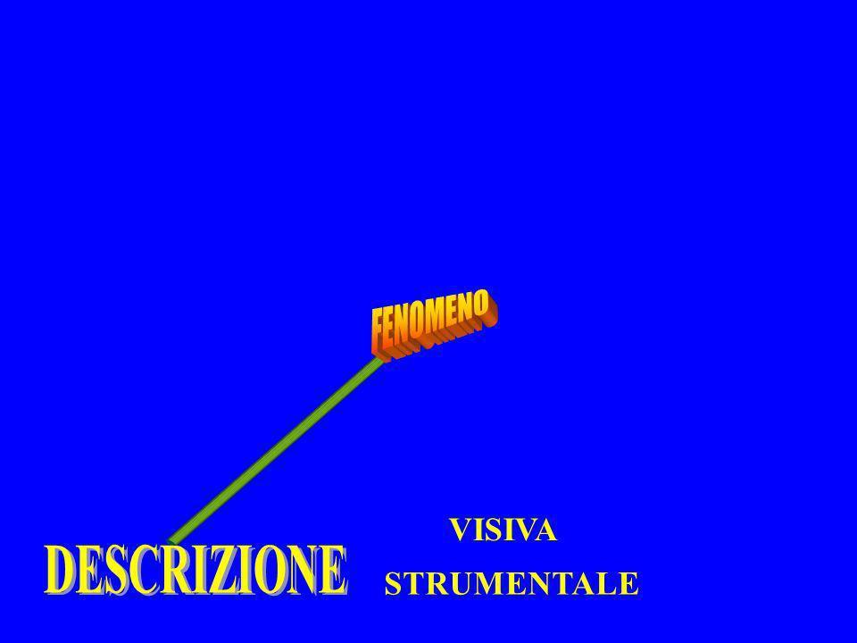 FENOMENO VISIVA DESCRIZIONE STRUMENTALE