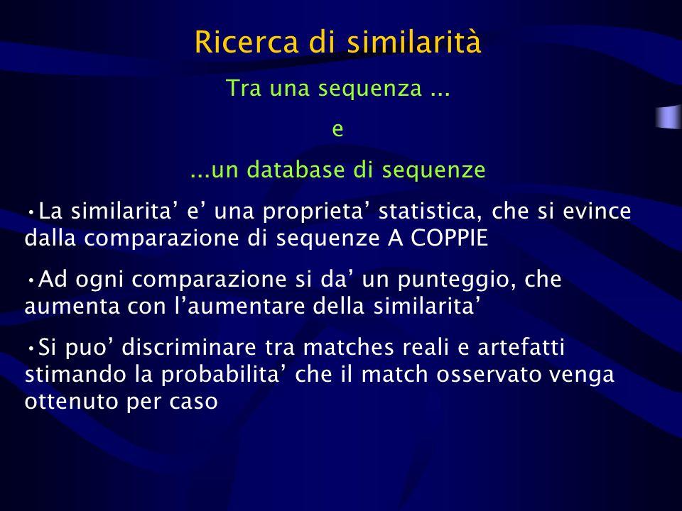 ...un database di sequenze