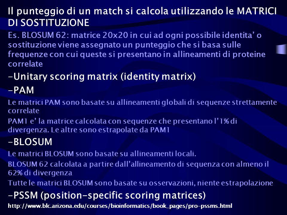 Unitary scoring matrix (identity matrix) PAM