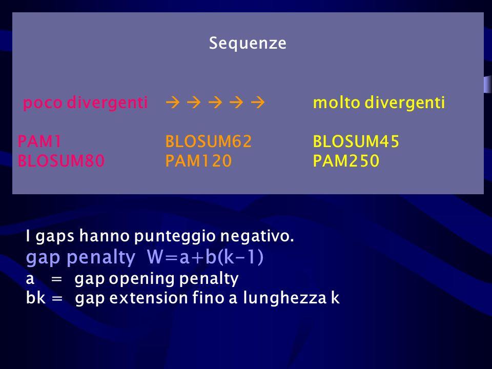 gap penalty W=a+b(k-1) Sequenze
