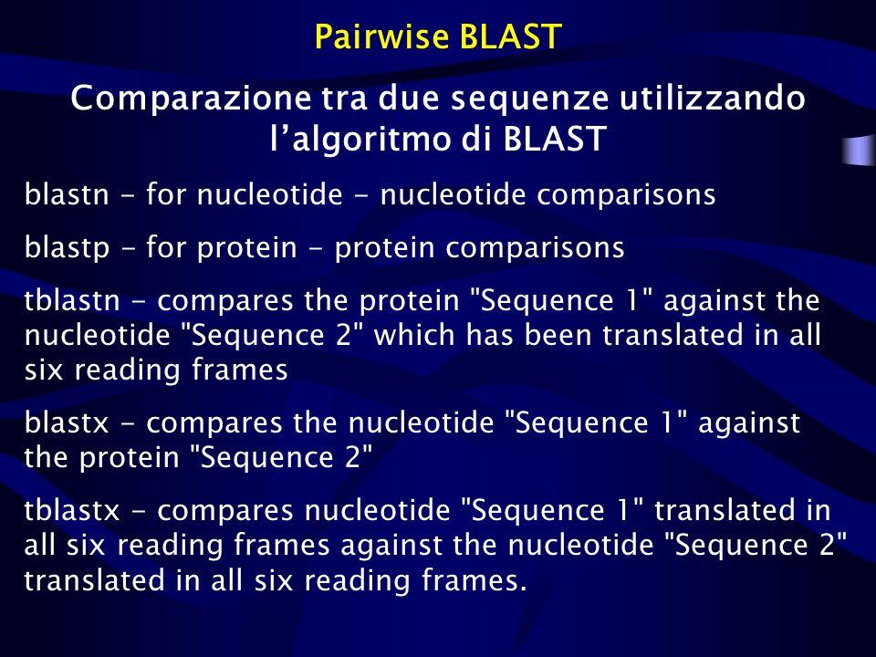 Comparazione tra due sequenze utilizzando l'algoritmo di BLAST