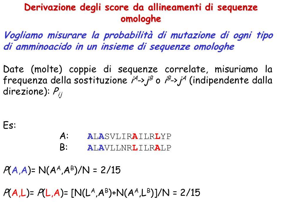 Derivazione degli score da allineamenti di sequenze omologhe