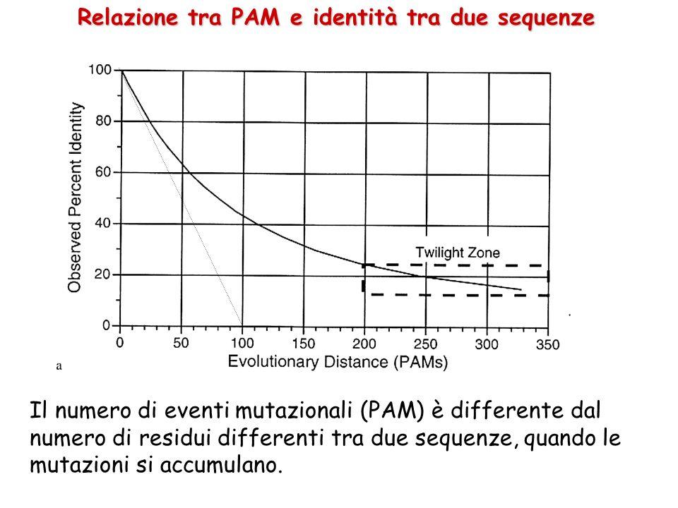 Relazione tra PAM e identità tra due sequenze