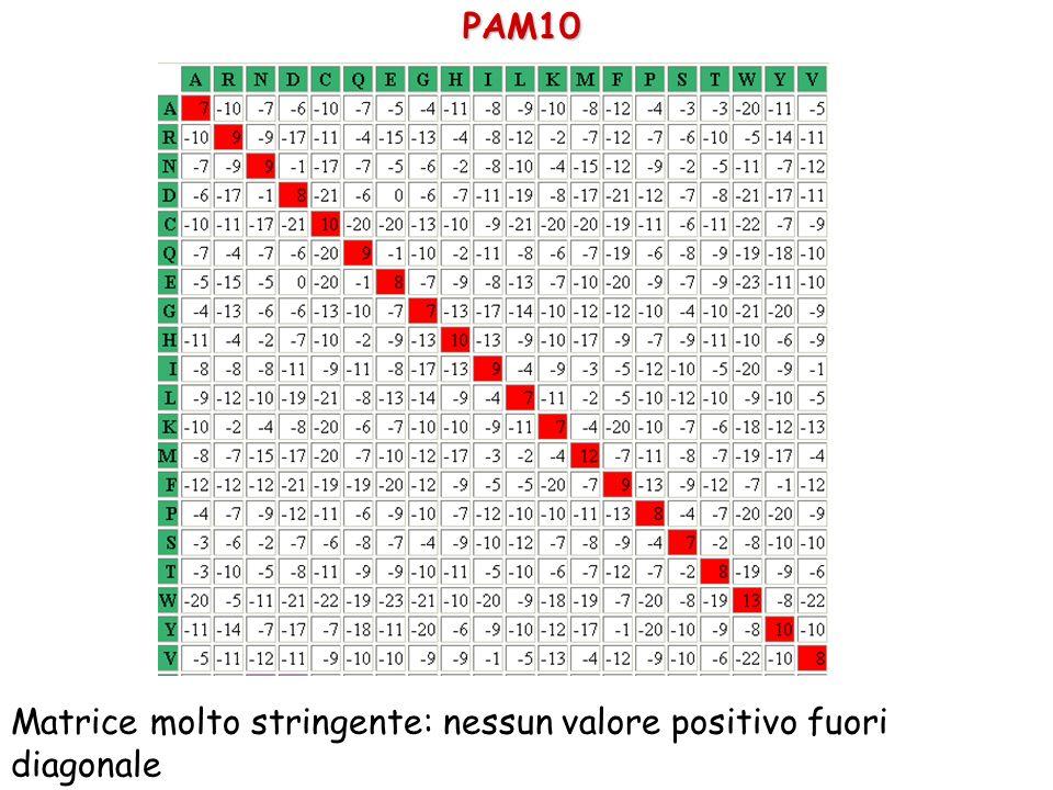 PAM10 Matrice molto stringente: nessun valore positivo fuori diagonale