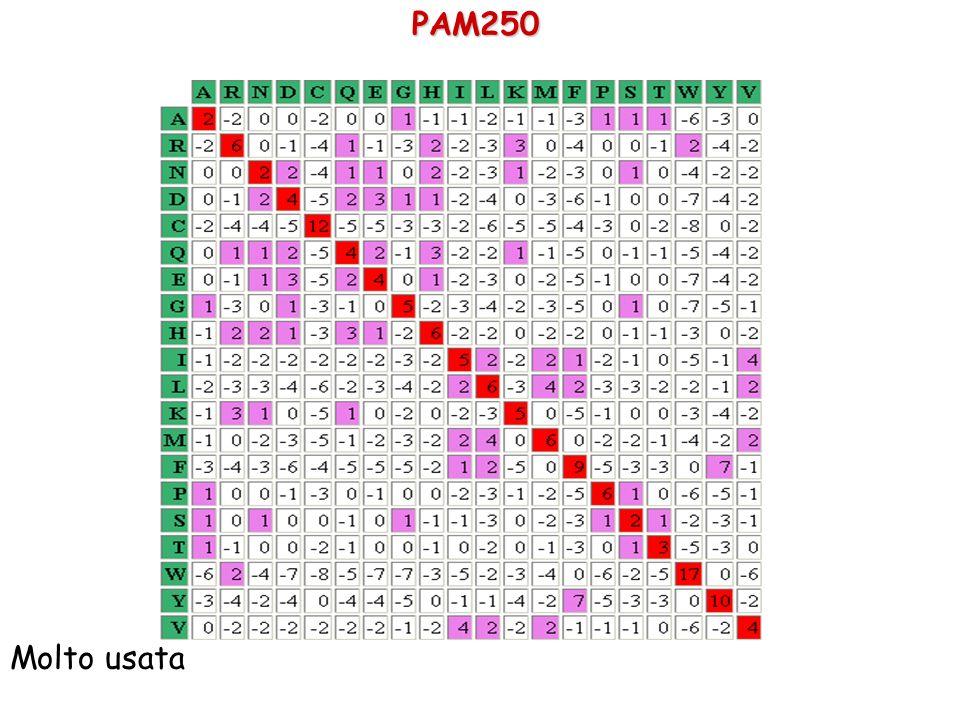 PAM250 Molto usata