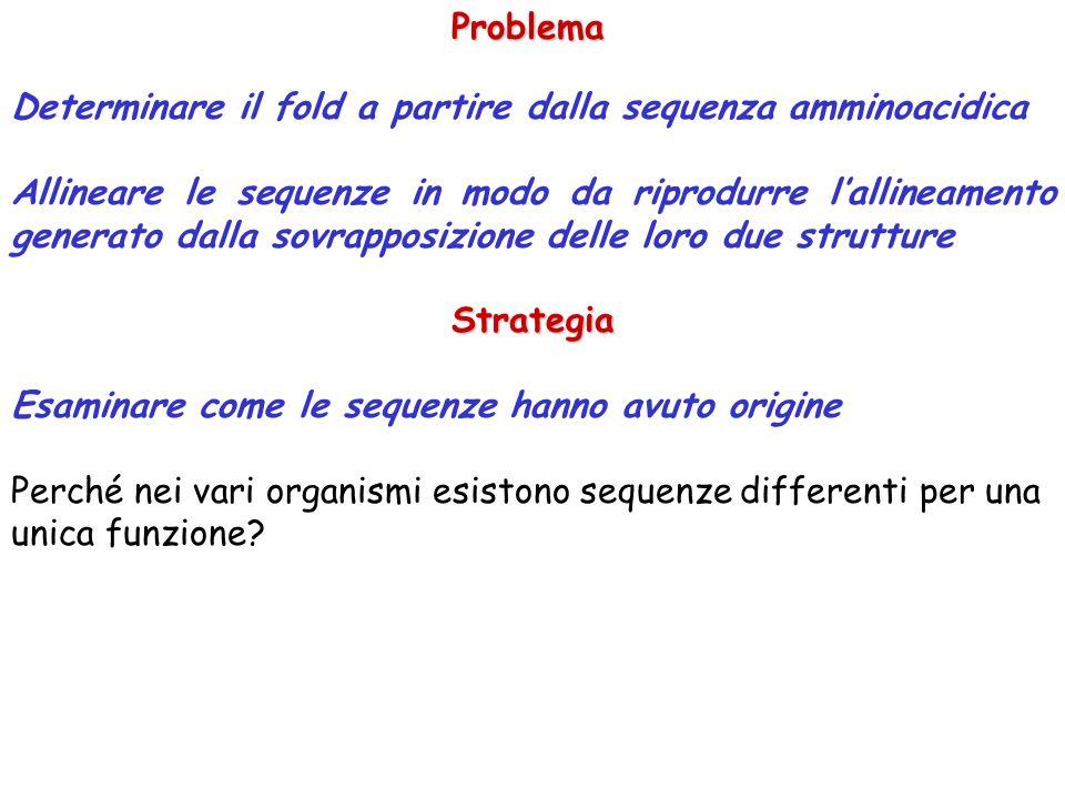 Problema Determinare il fold a partire dalla sequenza amminoacidica.