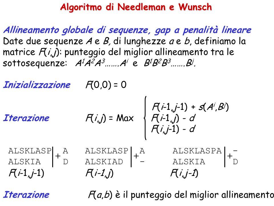 Algoritmo di Needleman e Wunsch